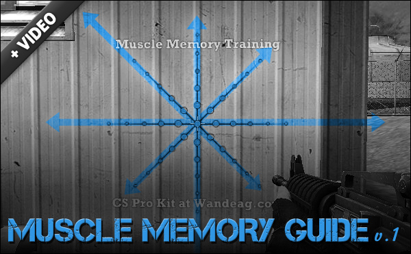 counter strike memory muscle